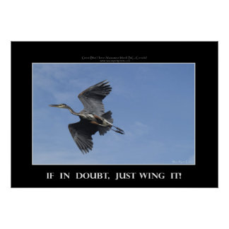 WING IT Photo Poster