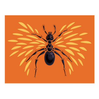 Winged Ant Fiery Orange Postcard