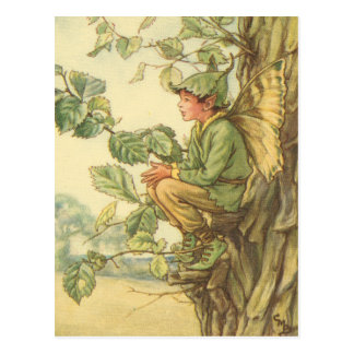 Winged Elm Fairy Sitting in a Tree Postcard