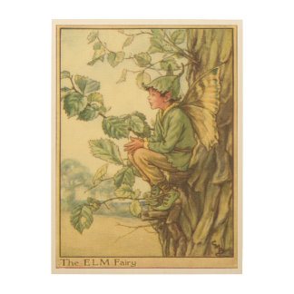 Winged Elm Fairy Sitting in a Tree Wood Print