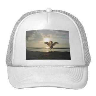 Winged Lion Baseball Hat