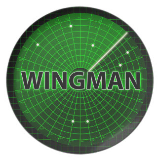 Wingman Radar Plate
