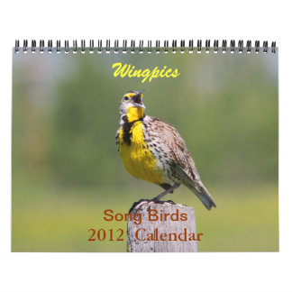 Wingpics 2012 Song Birds Calendar