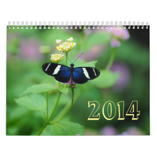 Wings of Wonderment Butterfly Calendars