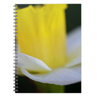 Wings Spiral Note Book