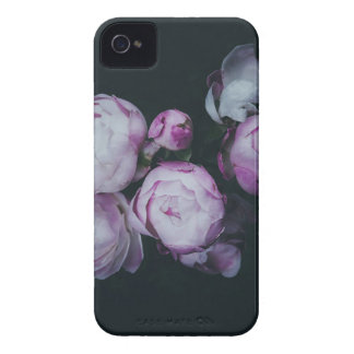 Wink Rose Buds dark background iPhone 4 Covers
