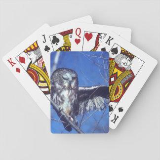 Winking owl poker deck