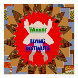 WINNER FLYING INSTINCTS :  Reward Excellence Merit Poster