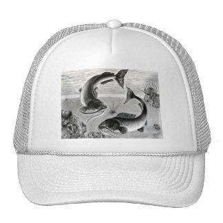 Winning art by  N. Bui - Grade 10 Trucker Hat