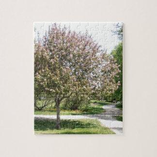 Winnipeg Blossom Puzzle