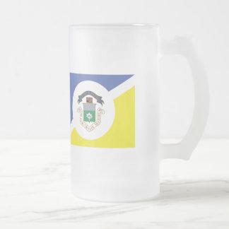 WINNIPEG Flag Frosted Glass Beer Mug