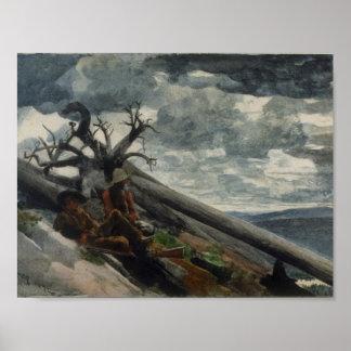 Winslow Homer - Burnt Mountain (1892) Poster