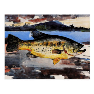 Winslow Homer painting, Bass Postcard
