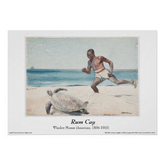 "Winslow Homer - ""Rum Cay"" Poster"