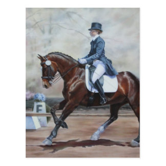 Winsor in Dressage Postcard
