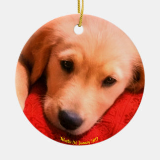 Winston Christmas Ornament