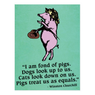Winston Churchill 'Fond of pigs' Quote Postcard