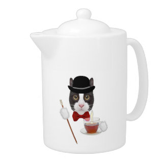 Winston The Cat