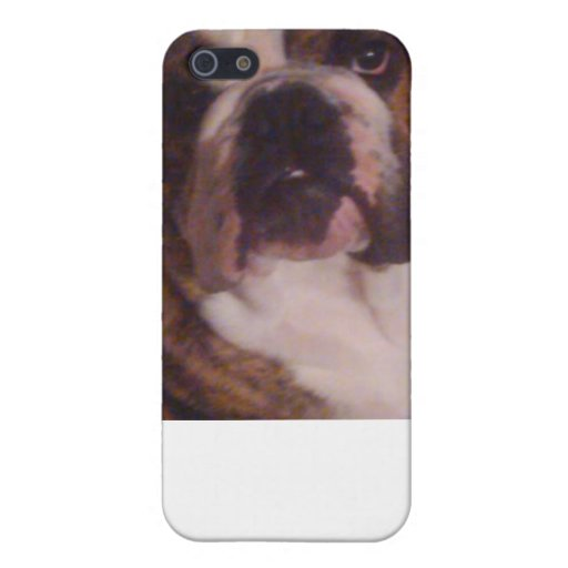 Winston The Pew iPhone/iPad case iPhone 5 Covers