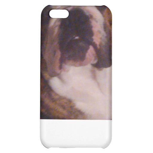 Winston The Pew iPhone/iPad case iPhone 5C Case