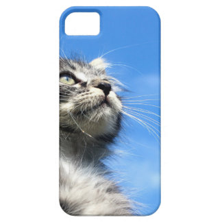 Winston the Tabby Aviator Cat Case For The iPhone 5
