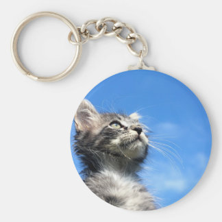 Winston the Tabby Aviator Cat Keychain