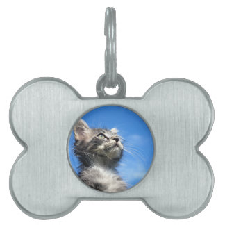 Winston the Tabby Aviator Cat Pet Name Tag