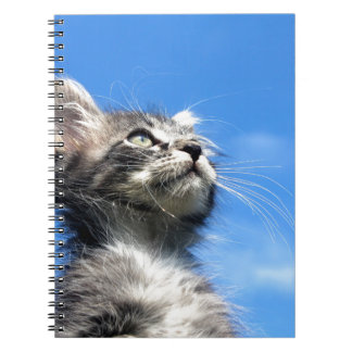 Winston the Tabby Aviator Cat Spiral Note Book