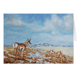 Winter Antelope in Wyoming Card