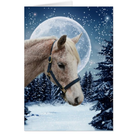 Winter Arabian #1 Card