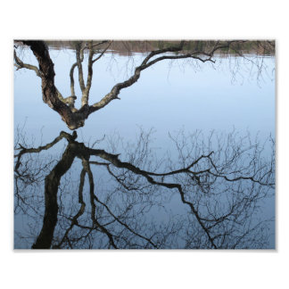 Winter at Jamaica Pond, 8x10 photo print