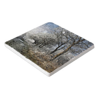 Winter Bayou Trees Landscape Watercolor Painting Trivet