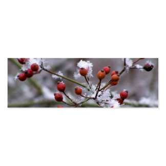 Winter Berries Bookmark Double-Sided Mini Business Cards (Pack Of 20)