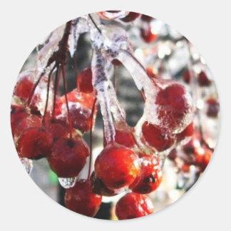 Winter Berries Classic Round Sticker