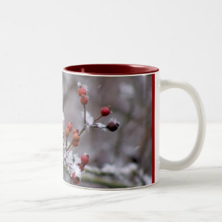 Winter Berries Two-Tone Coffee Mug