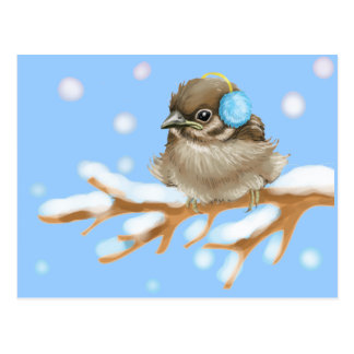 Winter Bird on snow Branch Postcard