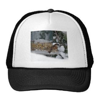 Winter Bird Trucker Hat