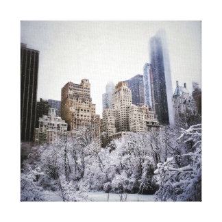Winter Blues In Central Park Canvas Print