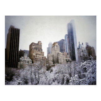 Winter Blues In Central Park Postcard