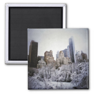 Winter Blues In Central Park Square Magnet