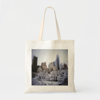 Winter Blues In Central Park Tote Bag