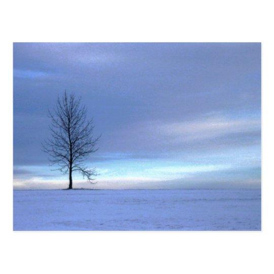Winter Blues Postcard