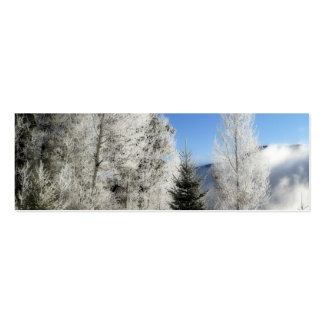 Winter by the Lake Mini Business Card