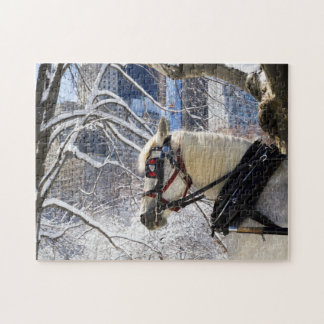 Winter Carriage Horse Puzzle