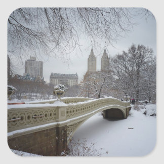 Winter - Central Park - New York City Stickers