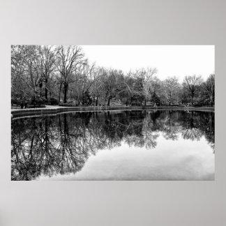 Winter Central Park, NYC Landscape Poster