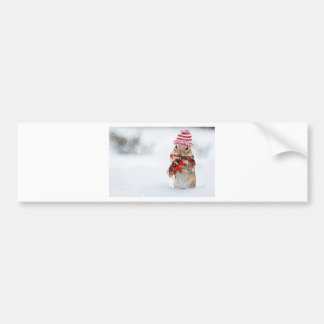Winter Chipmunk Knit Hat Red Scarf Bundled Up Bumper Sticker