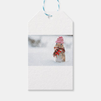Winter Chipmunk Knit Hat Red Scarf Bundled Up Gift Tags