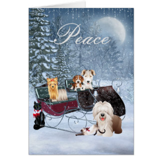 Winter Christmas Card with Dogs, Cats, Puppies