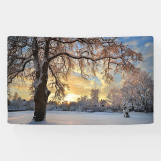 Winter Countryside In Latvia Banner